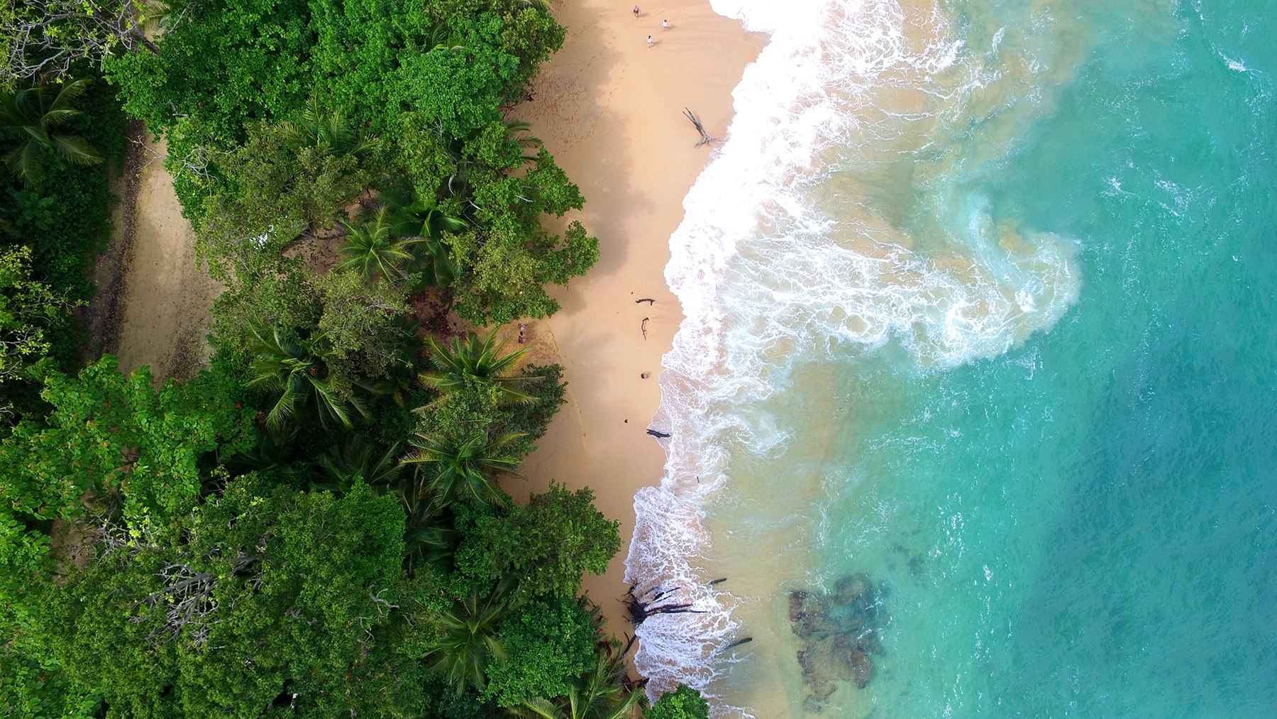 10 Reasons You Need to Visit Bocas del Toro in 2016